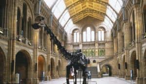 museum london børn