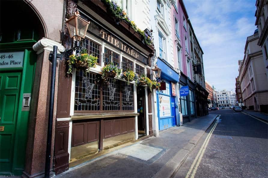 the harp pub